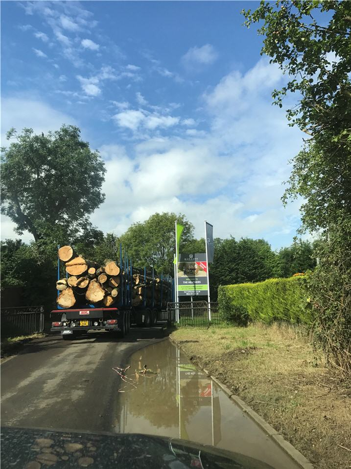 trailer-load-timber-off-for-processing-o.jpg
