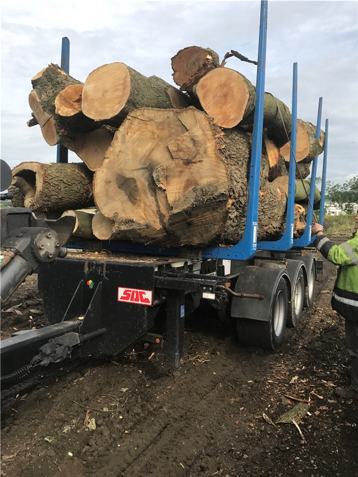 trailer-load-timber-strapped-down-o.jpg
