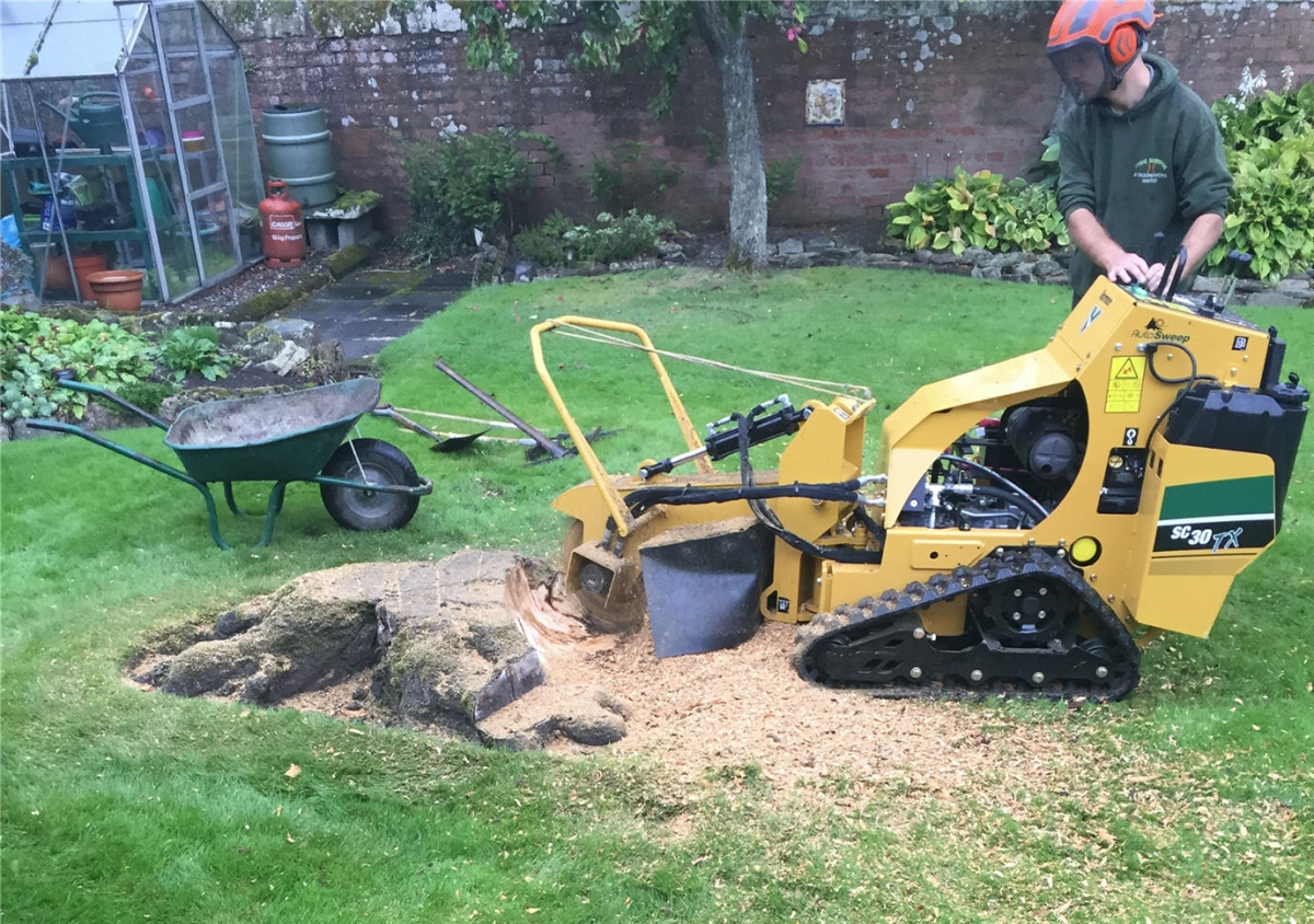 stump-grinder-hire-fife.jpg